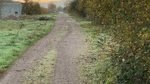carracedelo-caminos.jpg