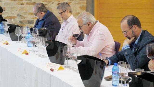 cata-calificacion-vinos-do-bierzo-2018.jpg