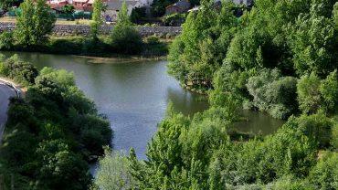 confluencia-rios-sil-y-boeza.jpg