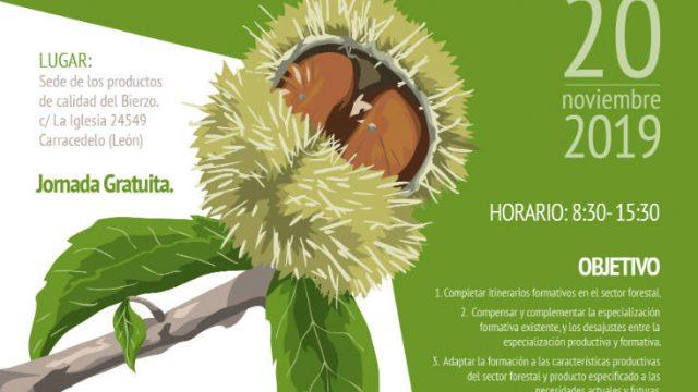cultivo-del-castano-carracedelo.jpg