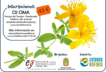 curso-plantas-medicinales-del-bierzo.jpg