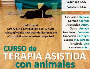 curso-terapia-asistida-con-animalesjpg.jpg