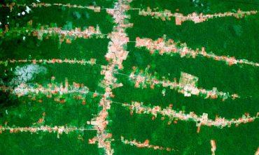 deforestacion-amazonia.jpg