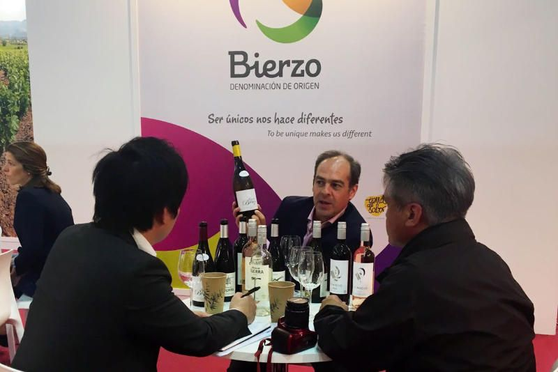 do-bierzo-promocion-vinos.jpg