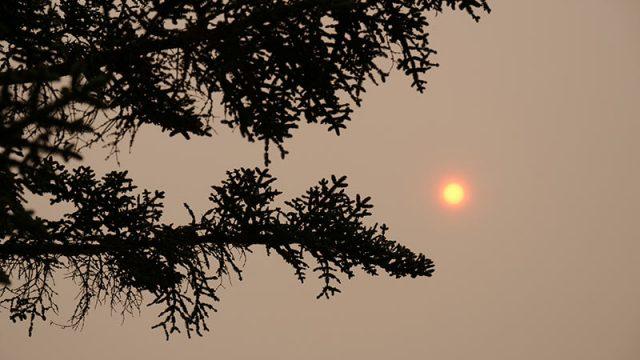 humo-incendios-ponferrada.jpg