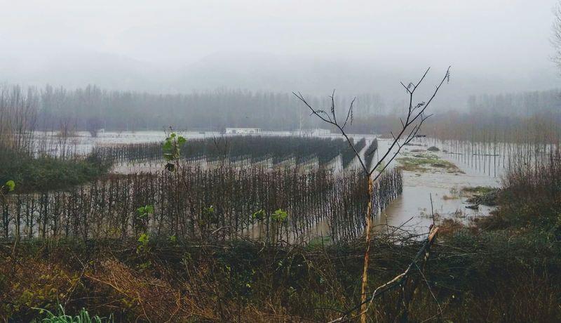 inundaciones-municipio-de-carracedelo.jpg