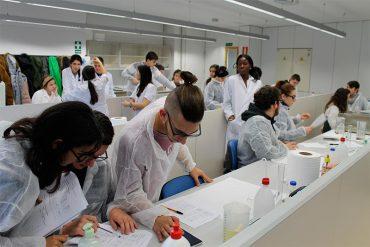 jovenes-investigadores.jpg