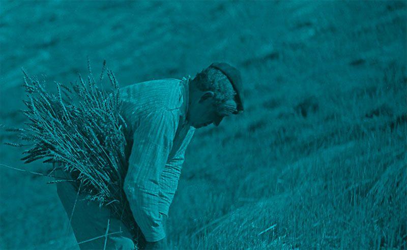 leon-film-rural.jpg