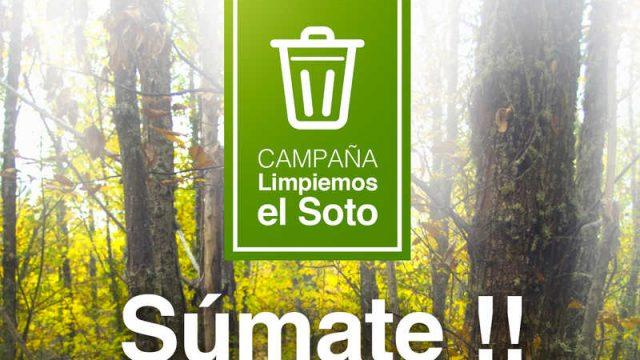 limpieza-soto-castanos-villar.jpg