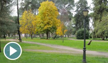 parque-del-plantio_p.jpg