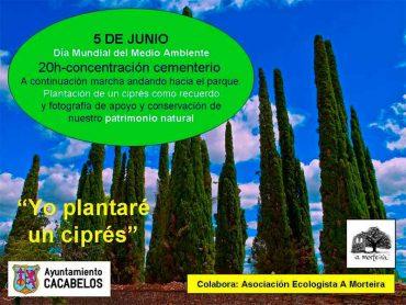 plantare-un-arbol-cacabelos.jpg