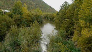 rio-sil-margenes-flores.jpg