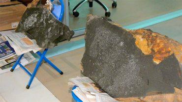 yacimiento-graptolitos-salas-de-la-ribera.jpg